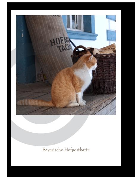 Bayerische Hofpostkarte_21011C