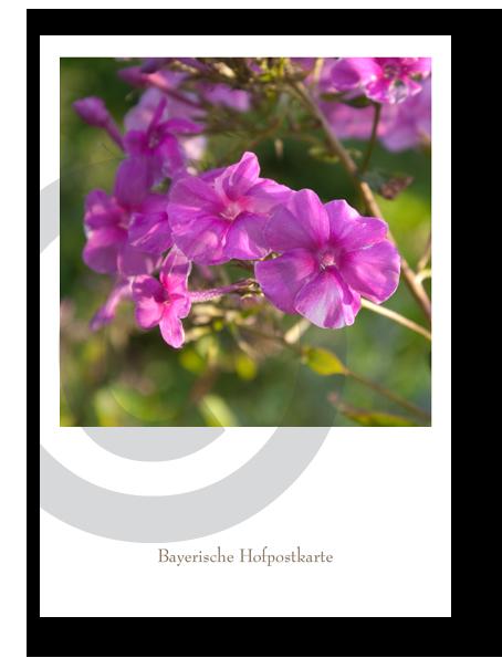 Bayerische Hofpostkarte_21105C