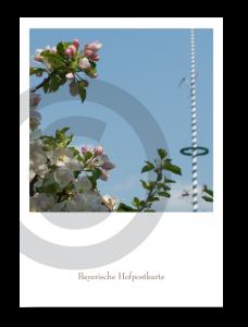 Bayerische Hofpostkarte_21112C